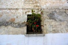 Ventana adornada con las flores Imagen de archivo libre de regalías
