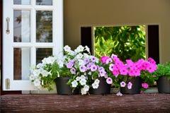 Ventana adornada con las flores frescas Imágenes de archivo libres de regalías