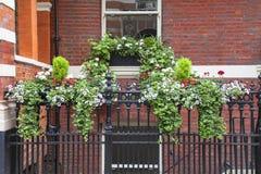 Ventana adornada con las flores, verdor decorativo, vista típica de la calle de Londres, Londres, Reino Unido Imagen de archivo libre de regalías