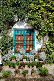 Ventana azul dentro del patio de Córdoba fotos de archivo libres de regalías
