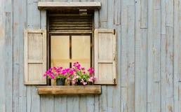 Ventana con el crisol de flor fotos de archivo
