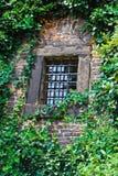 Ventana con la parrilla en la pared de piedra con la hiedra Imágenes de archivo libres de regalías