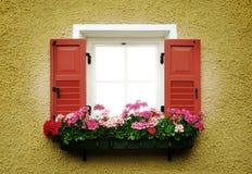 Ventana con las flores Foto de archivo libre de regalías