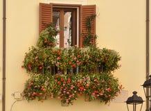 Ventana con las flores Imagen de archivo libre de regalías