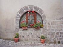 Ventana con las plantas y las flores imagen de archivo