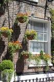 Ventana con los crisoles de flor Imagen de archivo libre de regalías