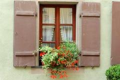 Ventana con los crisoles de flor Imagen de archivo