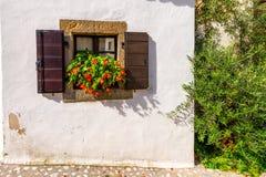 Ventana con los obturadores en la pared de piedra rústica, casa mediterránea con las flores y olivo Fotos de archivo