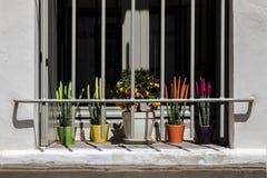 Ventana con los potes y las flores coloridos Imágenes de archivo libres de regalías