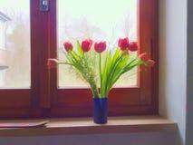 Ventana con los tulipanes rojos, imagen filtrada, estilo de la primavera del watercolour Fotografía de archivo