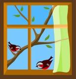 Ventana con objeto de dos pájaros en la ramificación del resorte Imagen de archivo libre de regalías