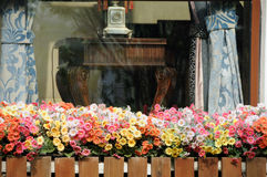 Ventana con un macizo de flores Imagen de archivo libre de regalías