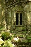 Ventana cubierta higo de Beng Mealea Imagen de archivo
