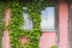 Ventana de la cabaña fotografía de archivo