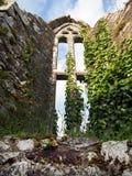 Ventana de la capilla en ruinas de la abadía en Irlanda Imagen de archivo libre de regalías