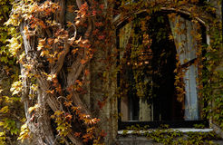 Ventana de la casa de señorío Fotografía de archivo