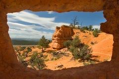 Ventana de la naturaleza Imagen de archivo libre de regalías