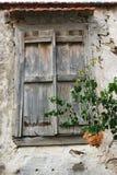 Ventana de madera vieja con las plantas verdes, lugar abandonado, casa vieja Imagenes de archivo