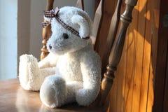 Ventana de Teddy Bear Looking Looking Out imágenes de archivo libres de regalías