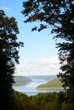 Ventana del bosque Fotografía de archivo libre de regalías