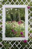 Ventana del jardín Fotos de archivo libres de regalías