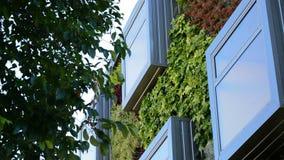 Ventana en el edificio verde moderno, conceptWindows de la naturaleza en el edificio moderno con los jardines verticales almacen de video
