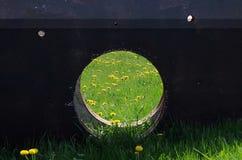 Ventana en naturaleza Foto de archivo libre de regalías