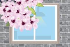 Ventana en una pared de ladrillo gris con una rama floreciente de una cereza libre illustration