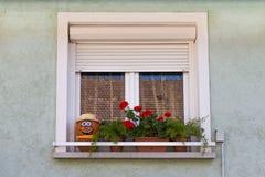 Ventana Flores en la ventana Cara de la calabaza en un alféizar Una ventana con los obturadores La ventana de una casa privada Imagen de archivo