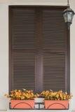 Ventana italiana con los obturadores de madera cerrados Imagen de archivo libre de regalías