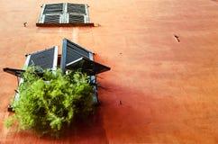 Ventana linda con verdes en Niza, Francia Imagenes de archivo