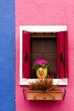 Ventana, obturadores y flores Imagen de archivo libre de regalías