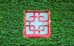 Ventana roja en hojas verdes Fotografía de archivo