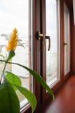 Ventana. Ventanas esmaltadas Foto de archivo