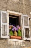 Ventana vieja con las flores foto de archivo