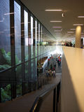 Ventana y escaleras enormes en el edificio moderno Fotos de archivo libres de regalías