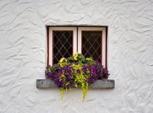 Ventana y flores Imagen de archivo libre de regalías