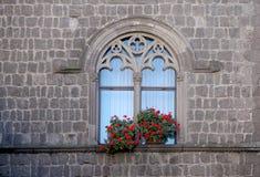 Ventana y flores góticas foto de archivo libre de regalías