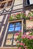 Ventana y flores hermosas detalles Castillo en Eisenach, Alemania de Wartburg Imágenes de archivo libres de regalías