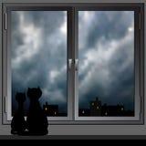 Ventana y gatos nocturnos. Vector. Fotos de archivo libres de regalías
