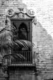 Ventana y sombras góticas Fotos de archivo libres de regalías