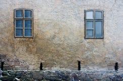 Ventanas congeladas Foto de archivo libre de regalías