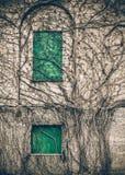 Ventanas constructivas abandonadas Foto de archivo libre de regalías