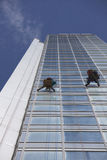 Ventanas de la limpieza del trabajador en altura Fotos de archivo libres de regalías