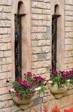 Ventanas del edificio y parterre de la flor Imagen de archivo libre de regalías