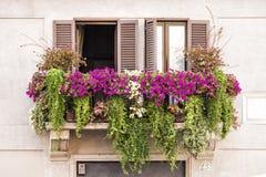 Ventanas italianas del balcón por completo de plantas y de flores