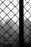 Ventanas protectoras de la malla Imagen de archivo