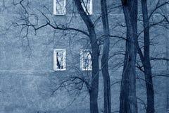 Ventanas tristes Imagen de archivo