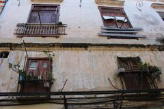 Ventanas viejas demasiado grandes para su edad con la vegetación en La Habana, Cuba Foto de archivo