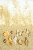 Ventas del mar Imagen de archivo
